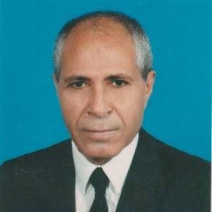 Ali DEMİREL